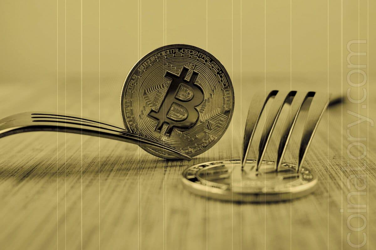 Bigger Blocks and Smarter Contracts Whats In Bitcoin Cashs Next Fork