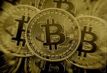 Bitcoin Clones Not Considered Worthy by Weiss