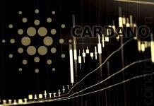Cardano Price Leads Lonely Advance as Bitcoin Retreats Below 8000