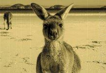 Australia has allocated 520 000 dollars for blockchain research