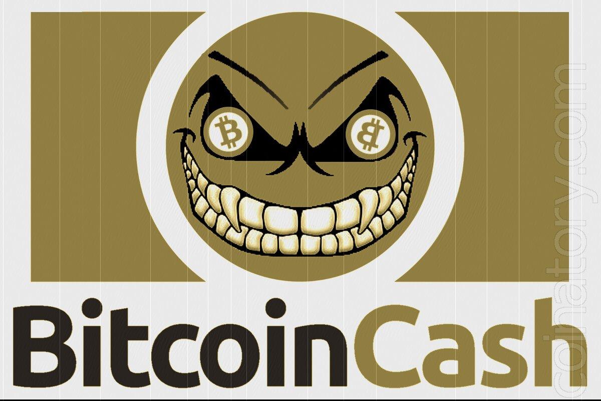 Bitcoin Cash a scam