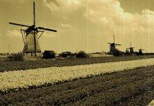 Netherlands test blockchain-solution for land registration
