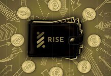 RISE To Roll Out New Wallets and Changes For Community