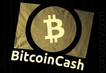 Bitcoin Cash network is strongly centralized