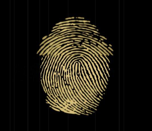 Hitachi will launch a blockchain payments verified with a fingerprint
