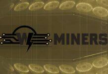 Watts Miners - single miner for multiple algorithms