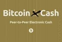 Bitcoin Cash is rarely used