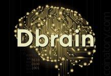 Dbrain attracted $ 8 million from Bitfury Group and other investors