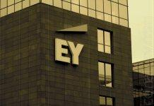 EY helps to transfer Vienna to the blockchain