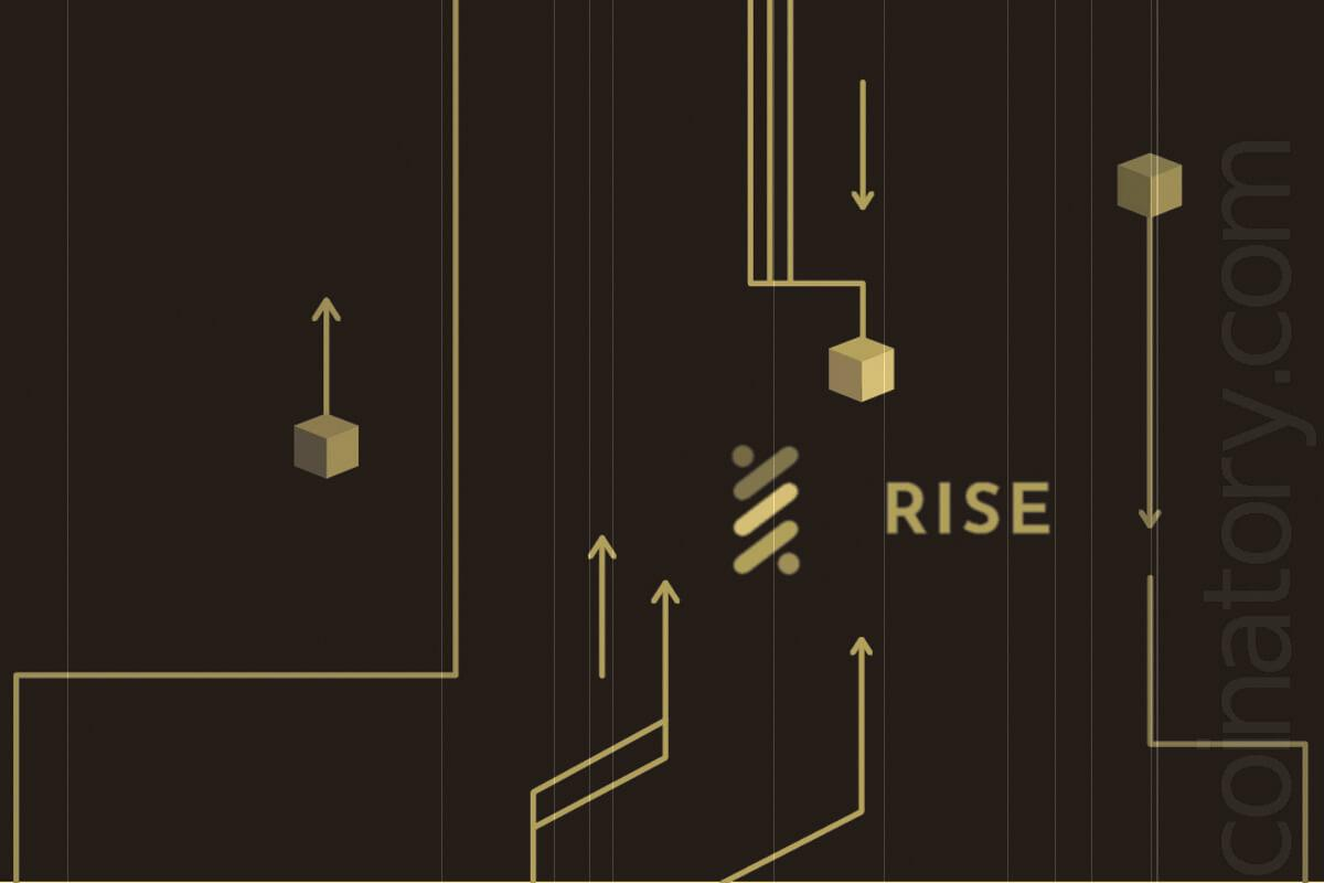 RISE v1.1.1 of DPOS Blockchain Technology Makes Groundbreaking Advancements