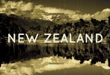 The devaluation of the New Zealand dollar sparked interest in buying cryptocurrency.
