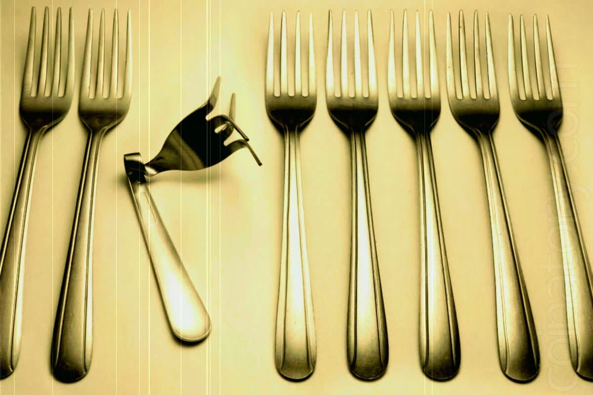 Forks, Forkomania, Forkology