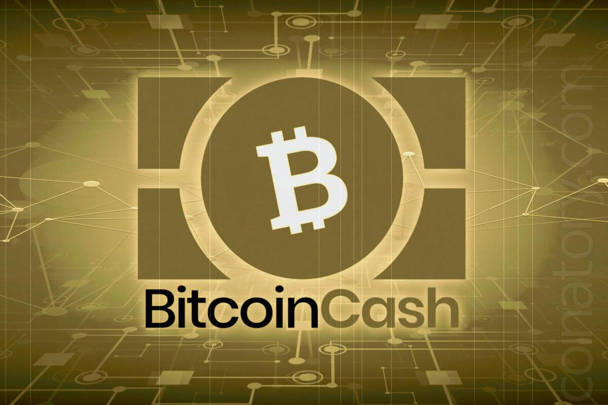 Why did Bitcoin Cash rise in price?