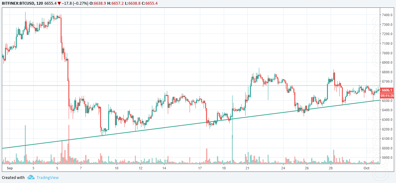 BTCUSD coinatory. Bitcoin: reasons for the price to go anywhere but up