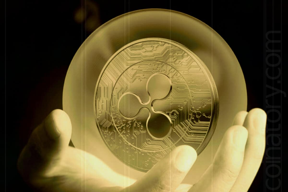 Is Ripple a unique investment coin